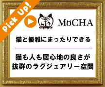 ピックアップ猫カフェMoCHA渋谷店
