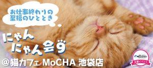 猫カフェMoCHA池袋店趣味コン